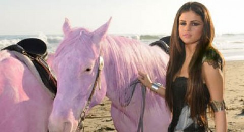 بينك تهاجم سيلينا بعد صبغها حصاناً باللون الوردي..بالصور